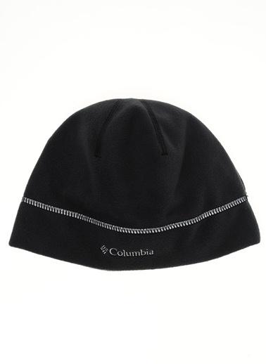 Polar Bere-Columbia